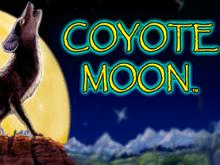 Виртуальный игровой автомат на деньги Coyote Moon