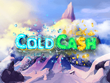 Cold Cash